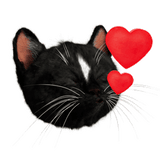 Felini the Kitty Emoji Kissing Cat With Hearts