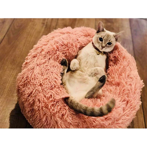 super soft cat bed