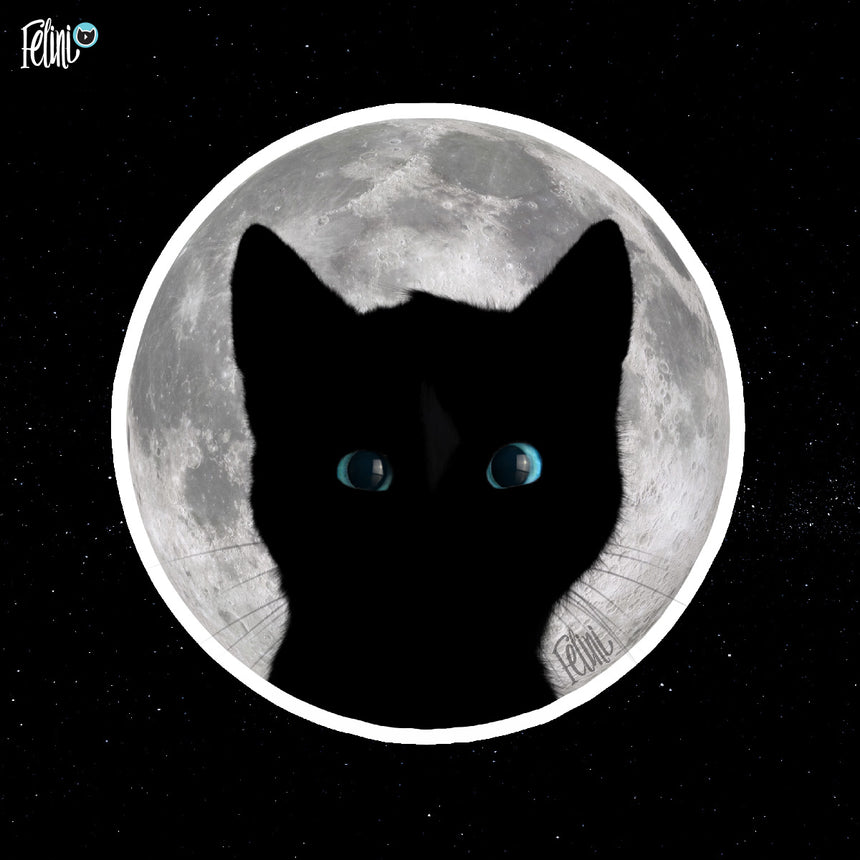 Free Felini Cat Wallpaper - Kitty Head Silhouette in front of Moon
