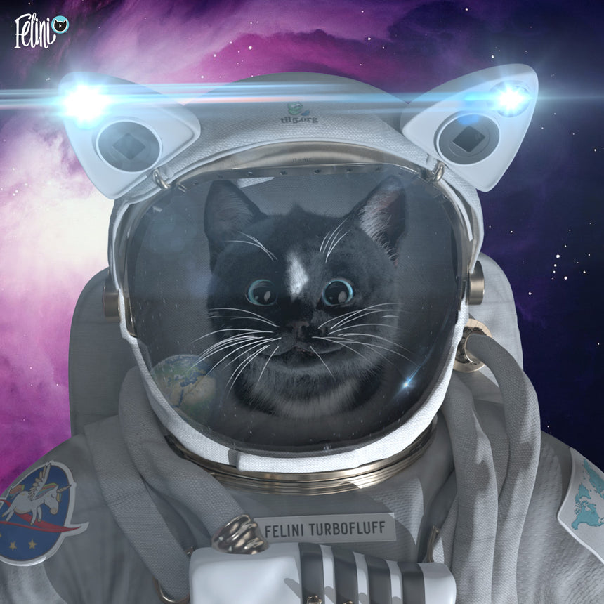 Free Felini Cat Wallpaper - Space Cat in Spacesuit Felini Turbofluff