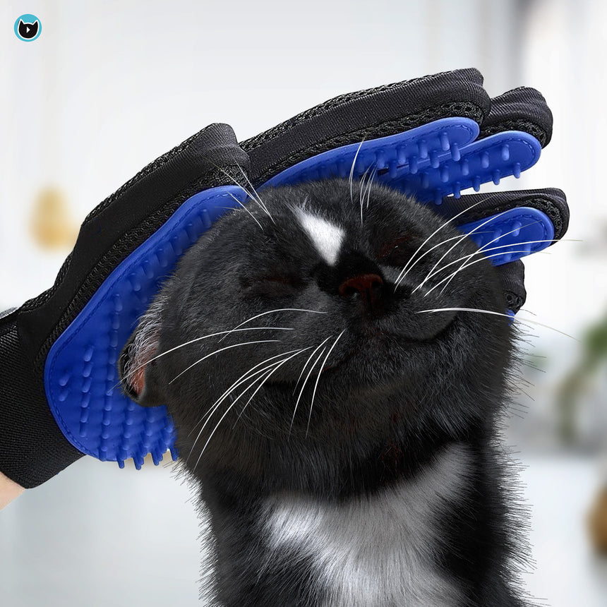 Gentle grooming gloves to remove cat hair from pet and couch - easy clean. Cover image of Felini enjoying to be combed | Cat Owners Essentials, Cute Cat Lady Gifts | by Felini