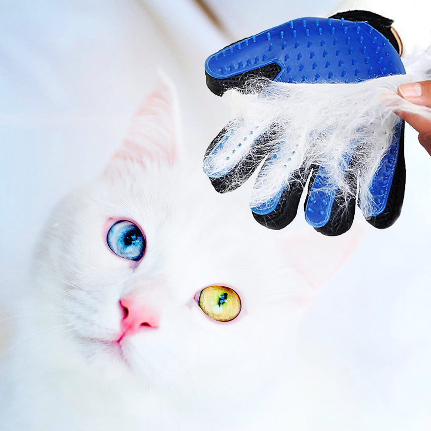 Gentle grooming gloves to remove cat hair from pet and couch - easy clean. example of white cat being groomed | Cat Owners Essentials, Cute Cat Lady Gifts | by Felini
