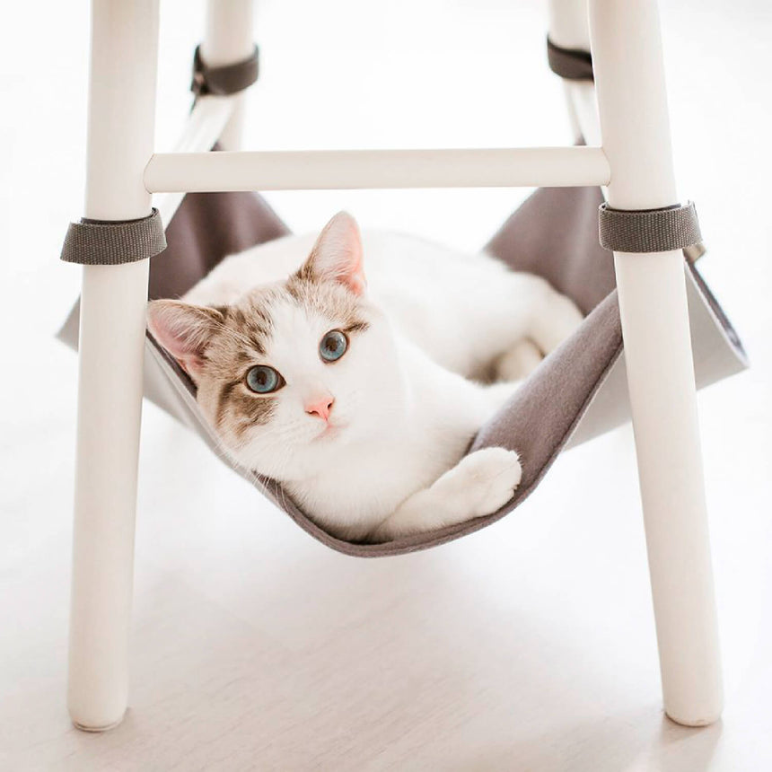 Kitty Hammock - Cat Bed & Chair Storage - image of white cat in light grey chair hammock