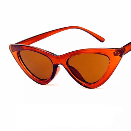 Perry Brown Frame Sunglasses