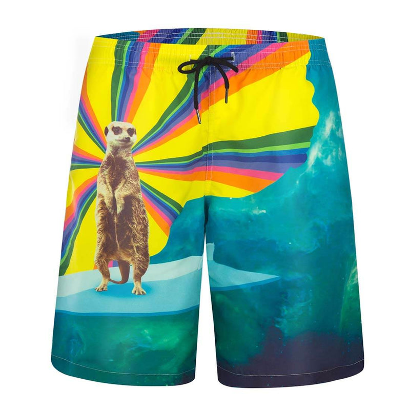 Aptro Men's Marine Life Printed Swim Trunks - Aptro