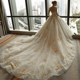 3/4 Sleeve Lace Appliques Tulle Ball Gown Plus Size Wedding Dress PFW0149