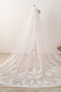 3M Long Embroidered Lace Cathedral Veil for Wedding