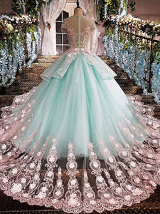 Princess Ball Gown Flower Appliques Prom Dress,Quinceanera Dresses PFP0130