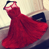 Charming Red A Line Lace Short Sleeveless Homecoming Dresses PFH0075