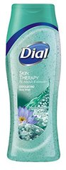 Dial Body Wash, Himalayan Salt & Exfoliating Beads, 16 Fl. Oz