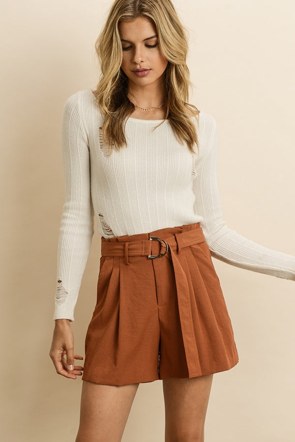 The Ana High Waist Pleated Shorts