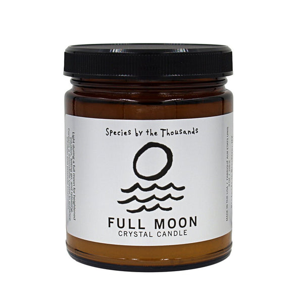 Full Moon Crystal Candle by Species by the Thousands