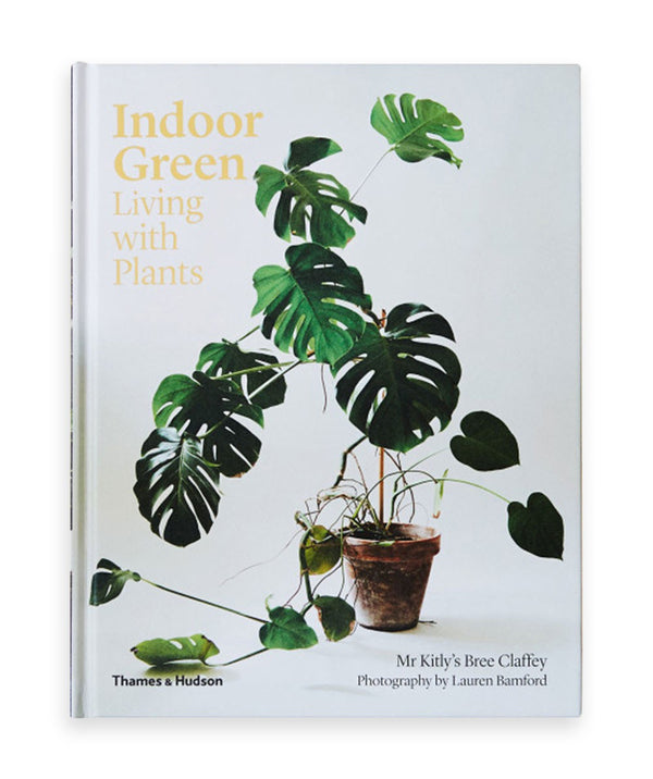 Indoor Green: Living with Plants by Mr Kitly's Bree Claffey