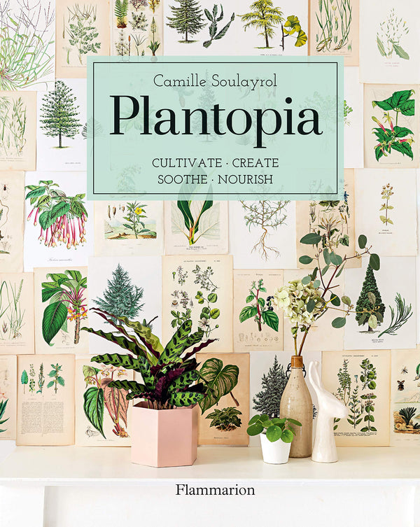 Plantopia: Cultivate, Create, Soothe, Nourish by Camille Soulayrol