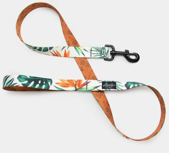 The Tropicana Leash by Leeds Dog Supply