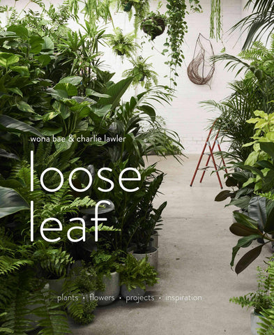 Loose Leaf: Plants, Flowers, Projects, Inspiration