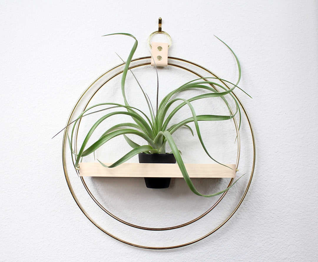 The Adi Plant Shelf By Braid & Wood Design Studio