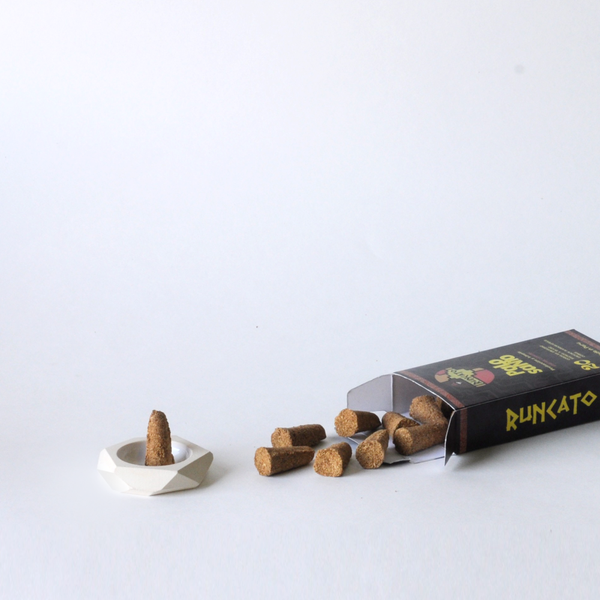 Palo Santo Cones with Incense Holder by Standard Wax