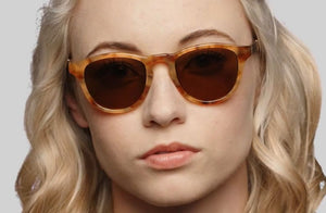 Francis Amber Acetate Sunglasses by Shwood