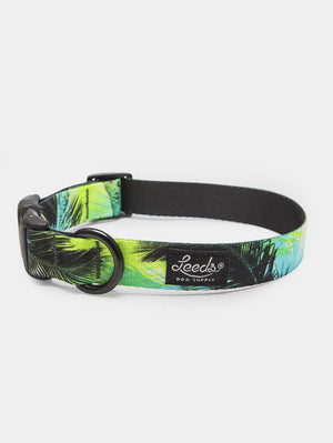 The Oasis Collar by Leeds Dog Supply