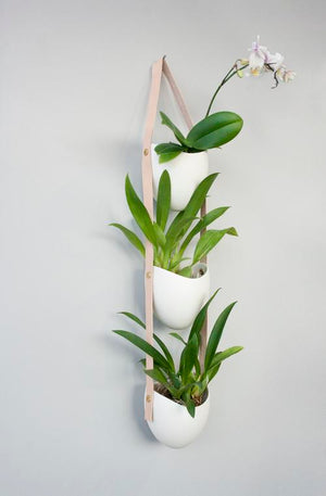 Spora 3-Tier Planter by Light + Ladder