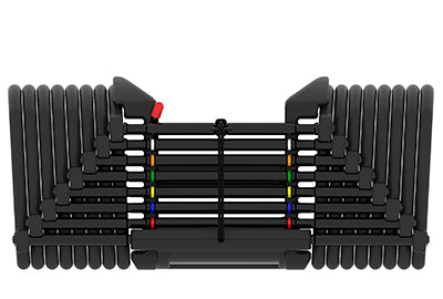 Powerblock Dumbells