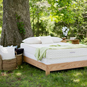 Organic Beds & Furniture