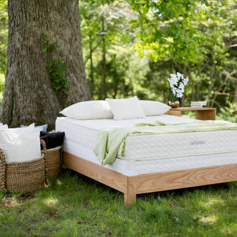 Image of Organic Beds & Furniture