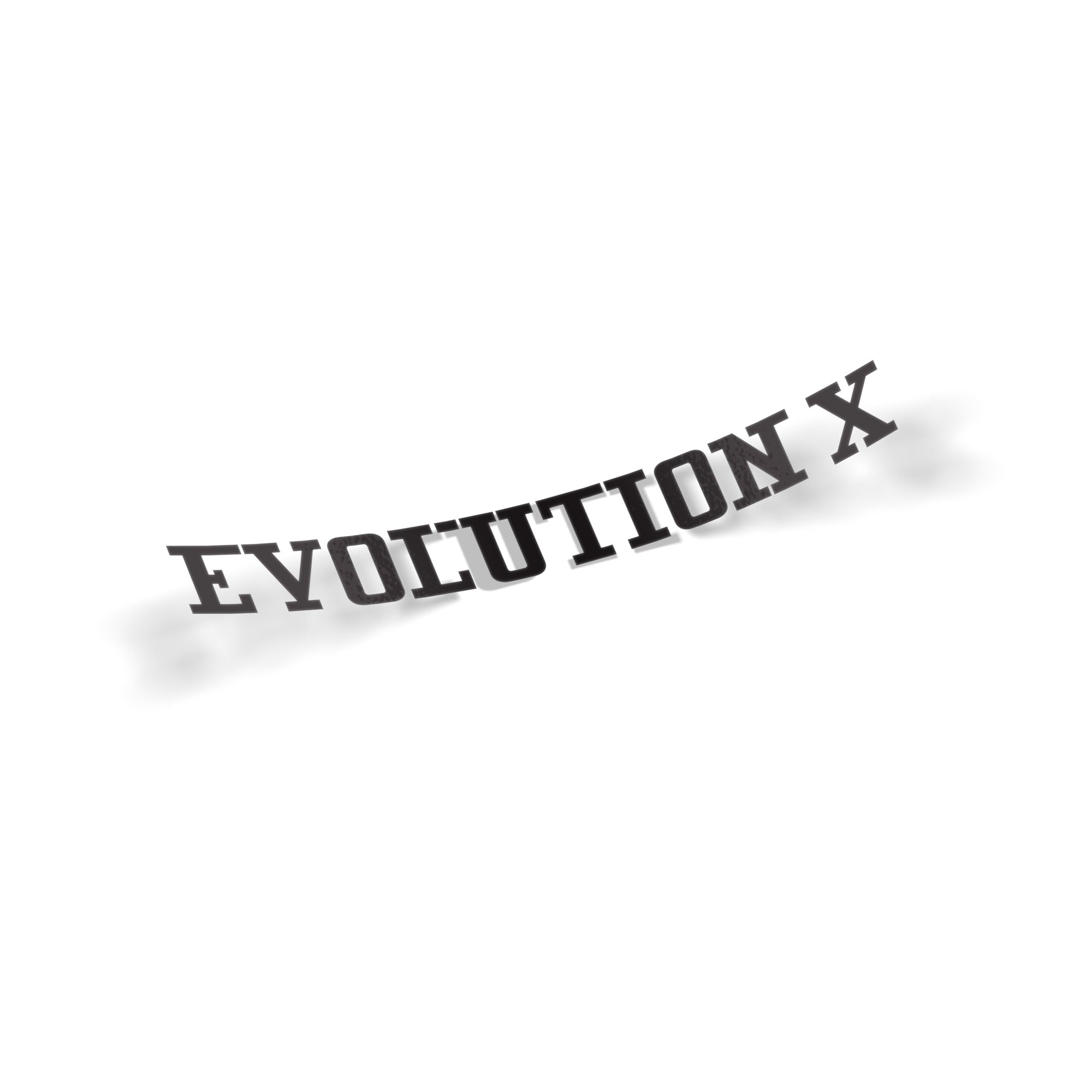 Evolution X - VINYL HOUZE
