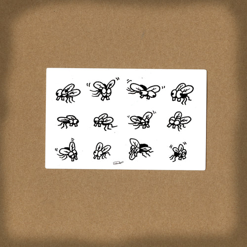(03 decal) FLY PAPER