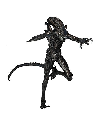 Neca Aliens 7  Scale Action Figure Series 5 Genocide Alien Black Action Figure