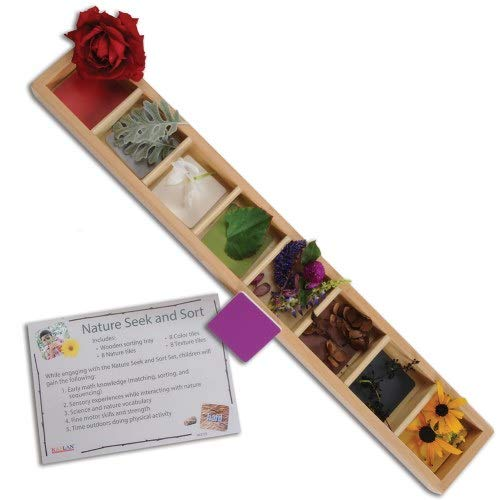 Kaplan Early Learning Company Nature Seek And Sort - Wooden Sorting Tray (20  L X 3  W)