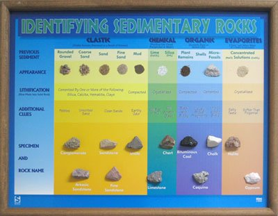 American Educational Products 2516 Identifying Sedimentary Rocks Chart