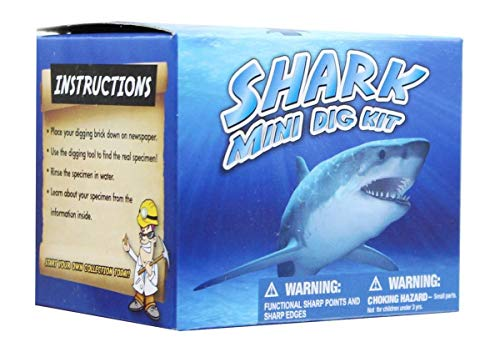 Discover With Dr. Cool Mini Shark Teeth Dig Science Kit