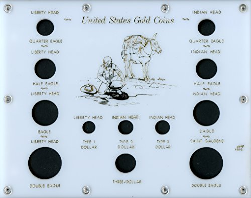 Capital Plastics 8  X 10  Acrylic Panels Screw Together Holder  United States Gold Coins  12-Coin Holder - White