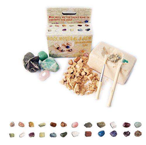 Small Rock, Mineral &Amp; Gem Excavation Kit
