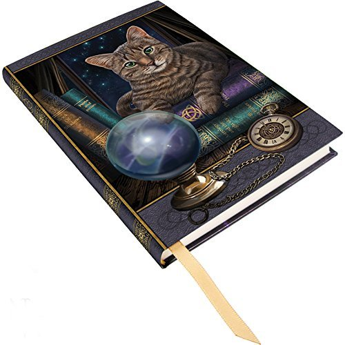 Lisa Parker Fortune Teller Tabby Cat Hard Cover Embossed Collector Journal Book