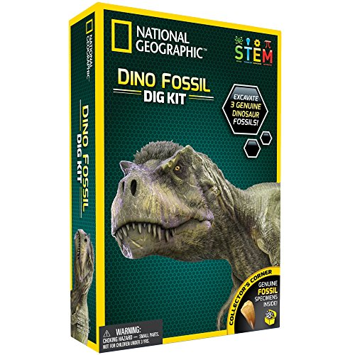 National Geographic Dino Fossil Dig Kit  Excavate 3 Real Fossils Including Dinosaur Bones &Amp; Mosasaur Teeth - Great Jurassic Science Gift For Paleontology And Archeology Enthusiasts Of Any Age