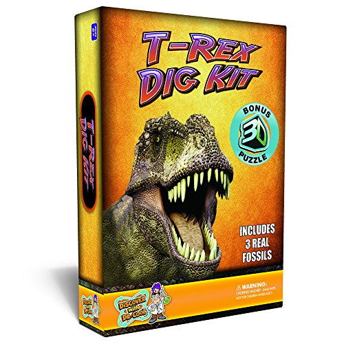 T-Rex Dinosaur Dig Kit Excavate 3 Real Dino Fossils!