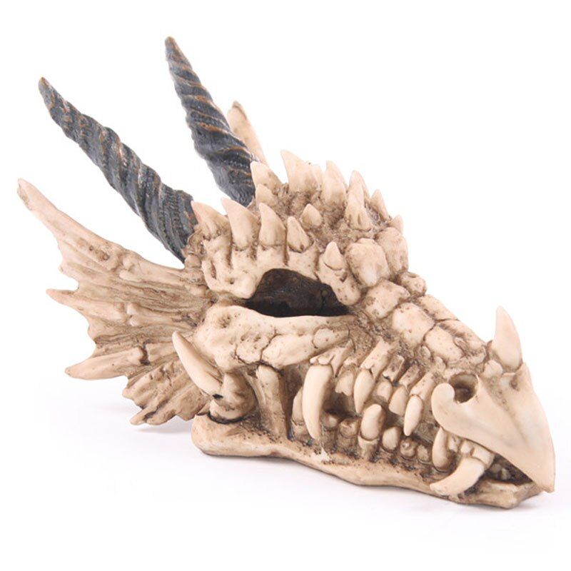 Snarling Magical Dragon Skull Treasure Trinket Box Piggy Bank Medieval Horned Dragon Skull Sculpture Statue Coin Box