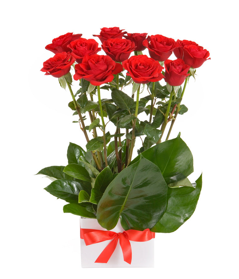 Box with Red Roses - Arabian Petals