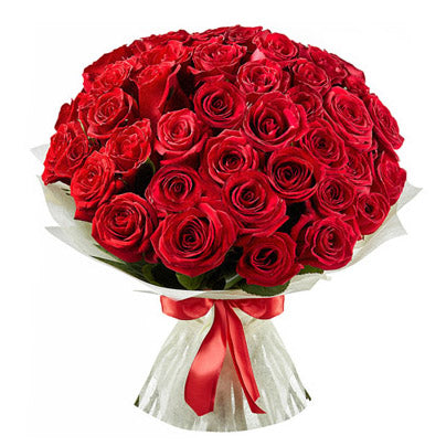 Red Roses - VD - Arabian Petals