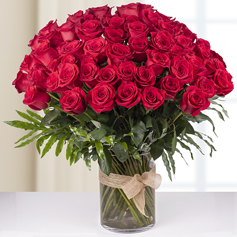 Infinite Passion Red Roses with 70 cm Length - VD