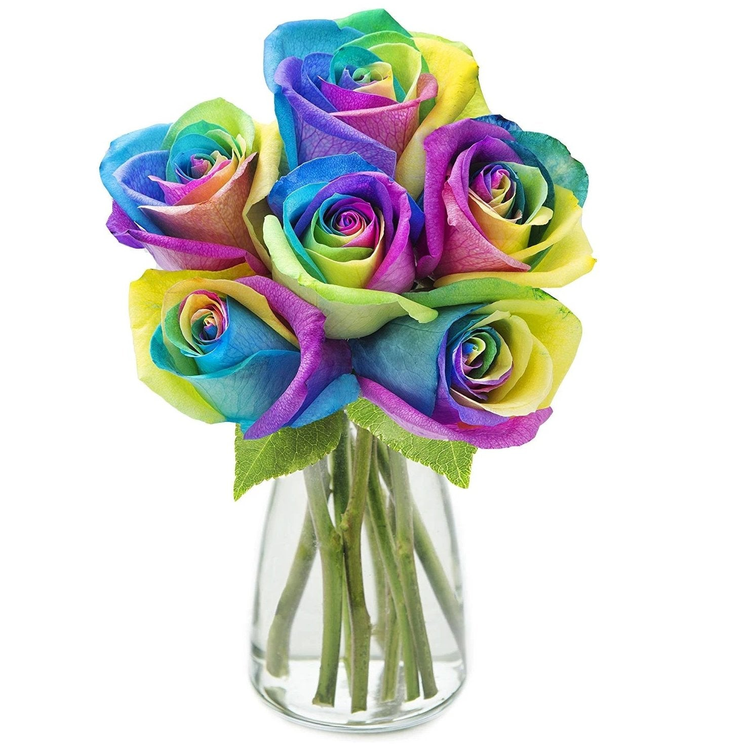 Rainbow Rose Bouquet - Arabian Petals