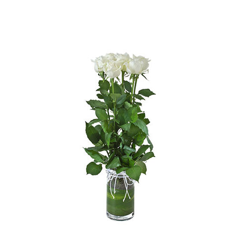 Vase with White Roses - Arabian Petals