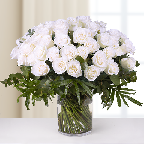 Unlimited Tenderness-50 White Roses with 70 cm