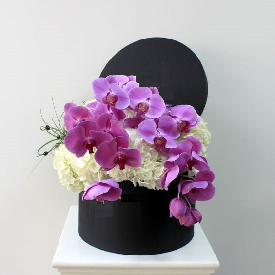 Pearl Phalaenopsis Orchids and Hydrangea  Box - Arabian Petals