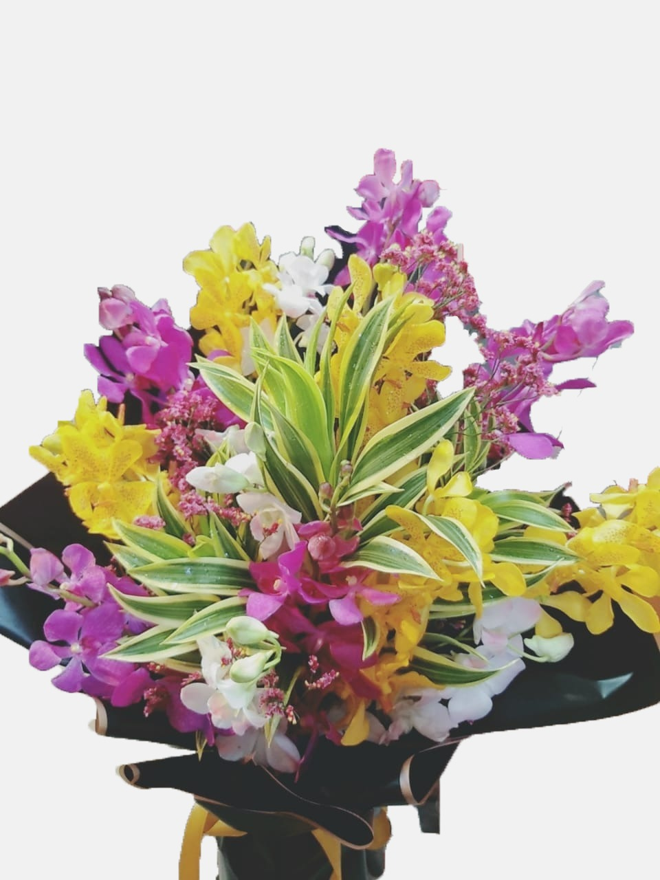 Love Orchids Arrangement