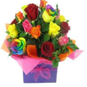 Lollipop Roses - FWR