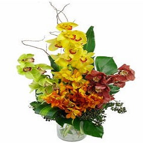 Mixed Orchid Vase - FWR